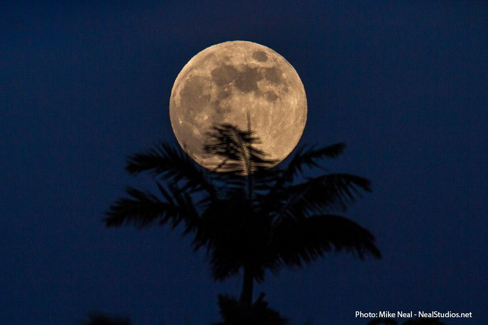2013 Harvest Moon Over Maui, HI