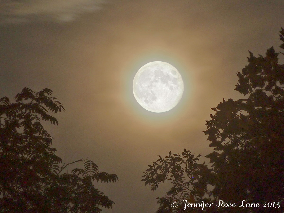 Harvest Moon Photos: Amazing Full Moon Images by Skywatchers