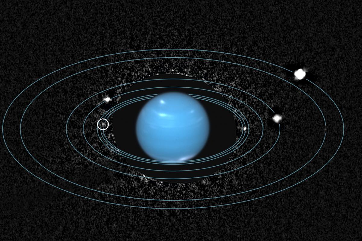 Orbits of Neptune Moons