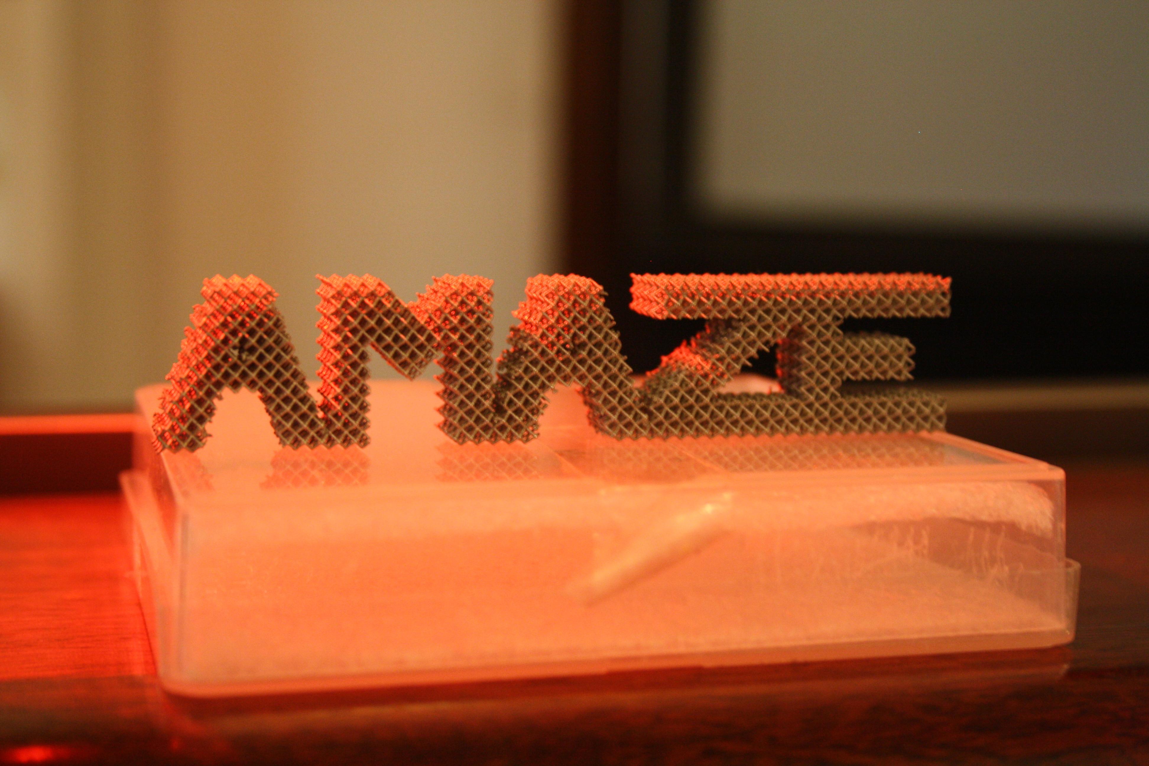 3D Printed AMAZE Program Logo