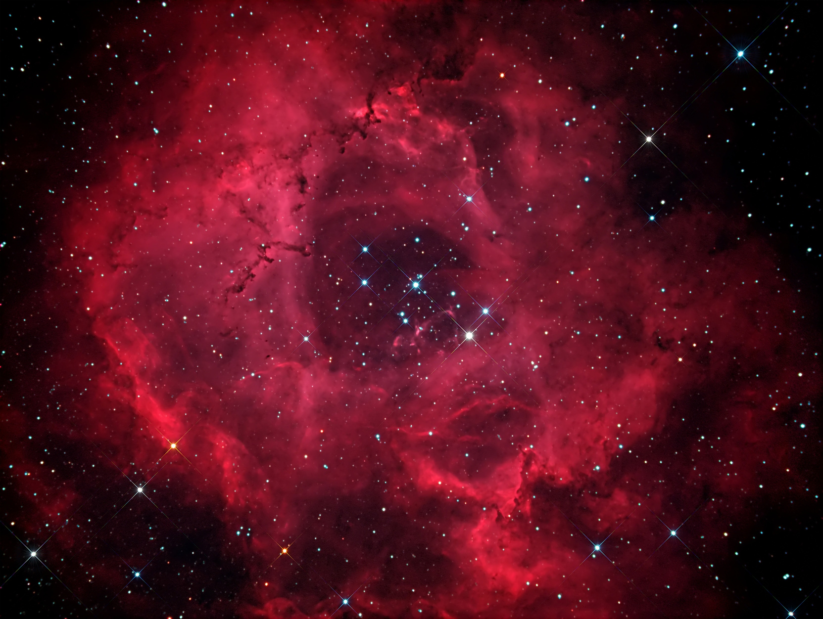 Amateur Astronomer Spots Stunning Rosette Nebula in Full Bloom (Photo)