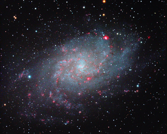 Triangulum Galaxy Dazzles in Stargazer's Photo