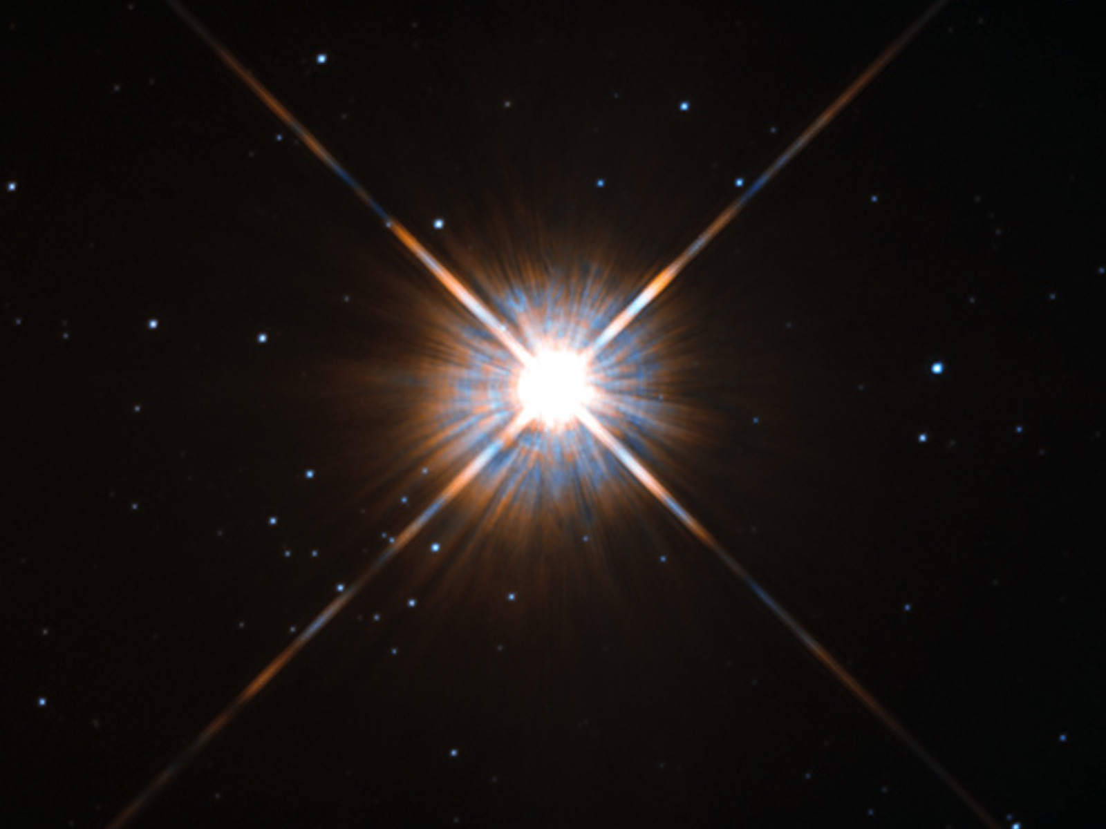 Bright-Eyed Neighbor   Space Wallpaper