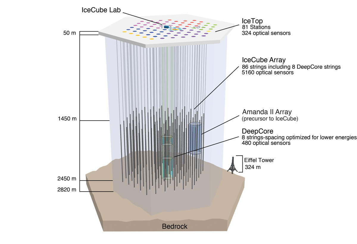 IceCube Neutrino Observatory's Sensors