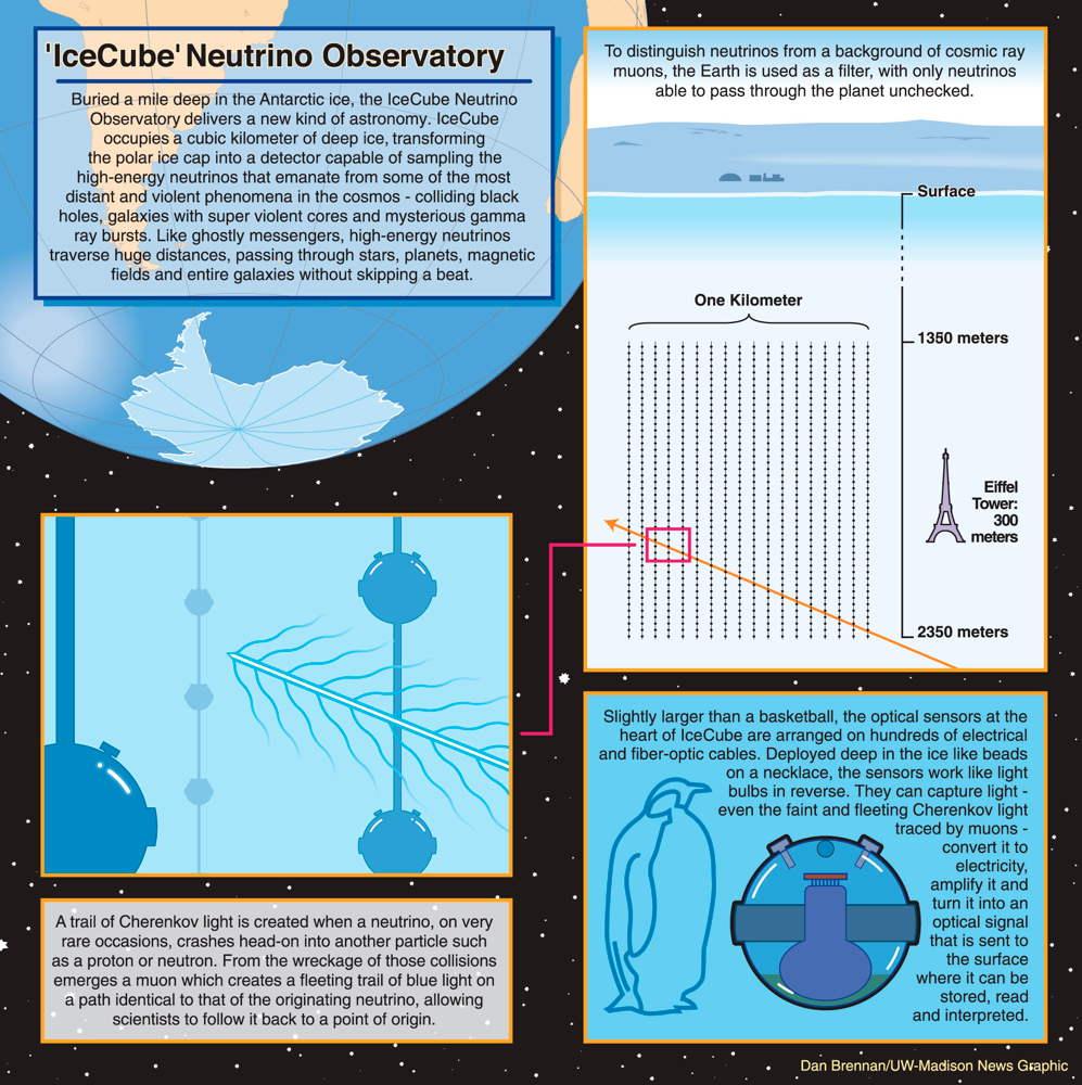 IceCube Neutrino Observatory Infographic