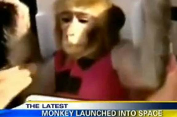 Iran successfully launched its second monkey into space Saturday (Dec. 14), landing it safely on Earth after a 15-minute ride, according to Iranian officials.