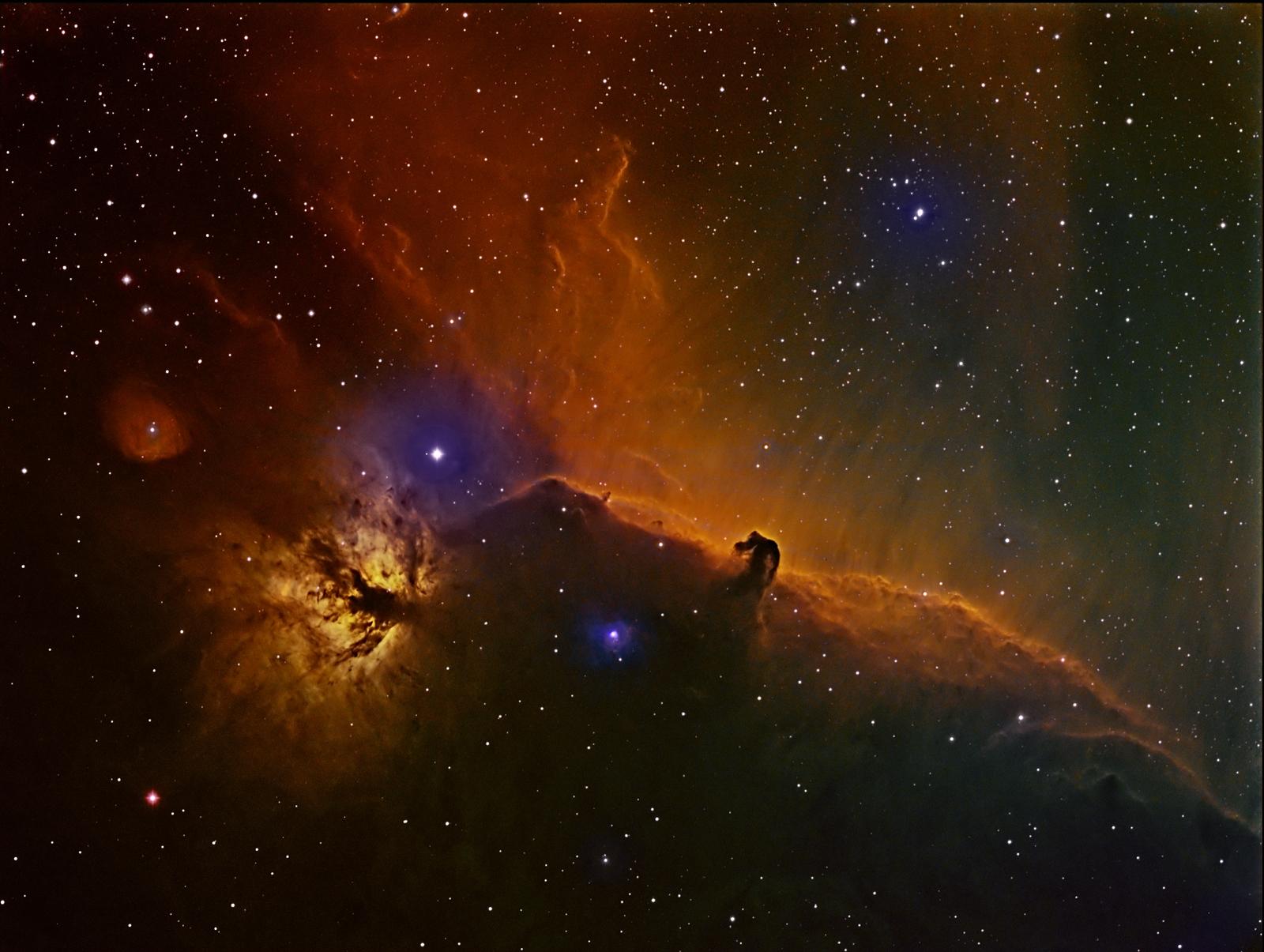 Horsehead and Flame Nebulae by David Ellison