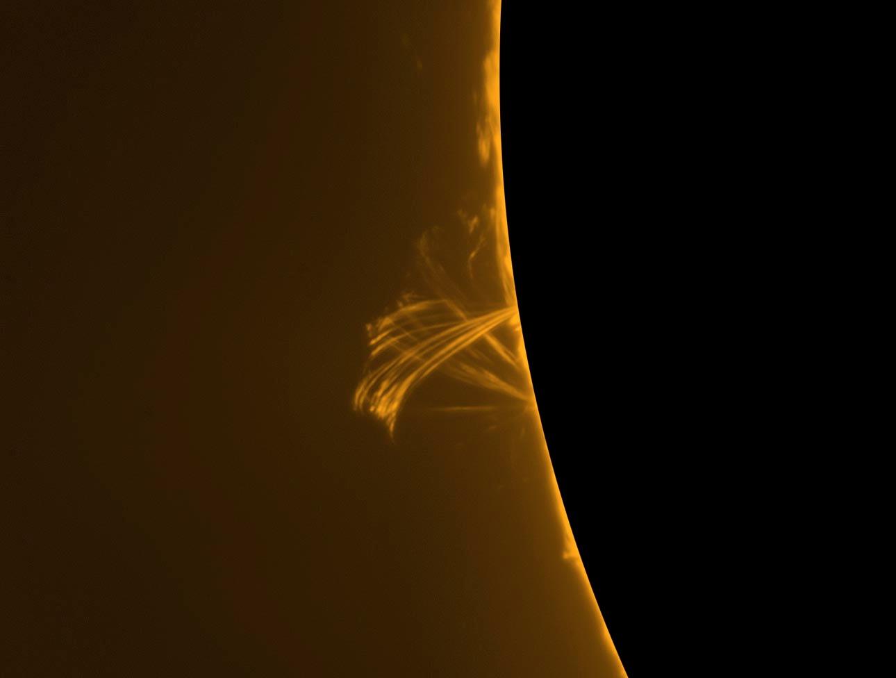 Solar Prominence, Dec. 31, 2013