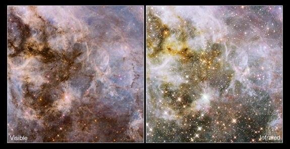 Created using observations taken as part of the Hubble Tarantula Treasury Project (HTTP), these images were snapped using Hubble's Wide Field Camera 3 (WFC3) and Advanced Camera for Surveys (ACS). Image released Jan. 9, 2014.