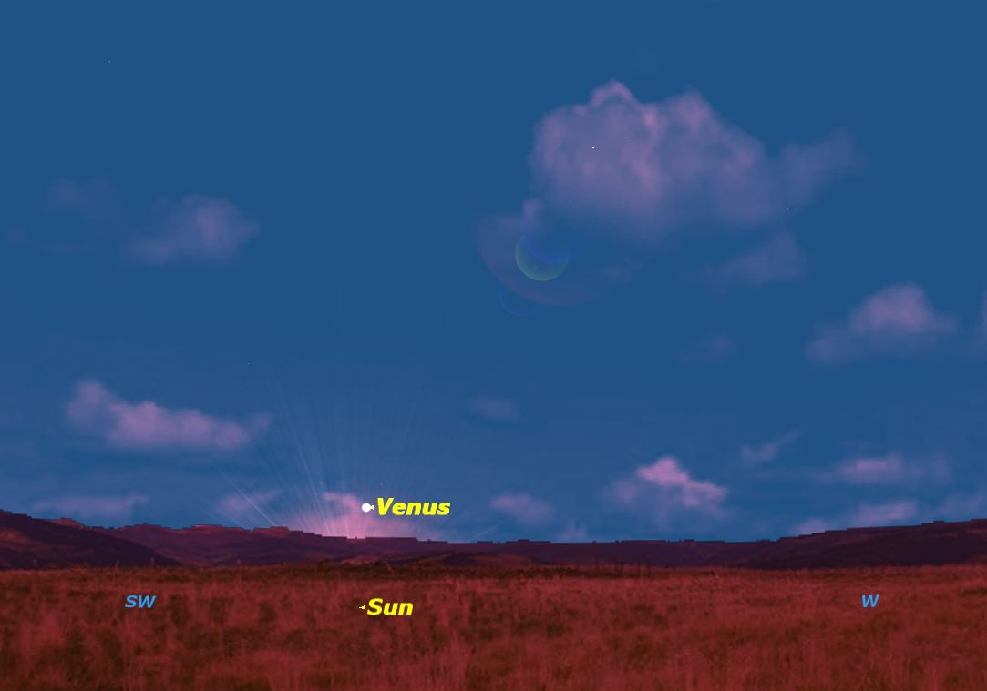 Venus Moves into the Morning Sky: How to See It