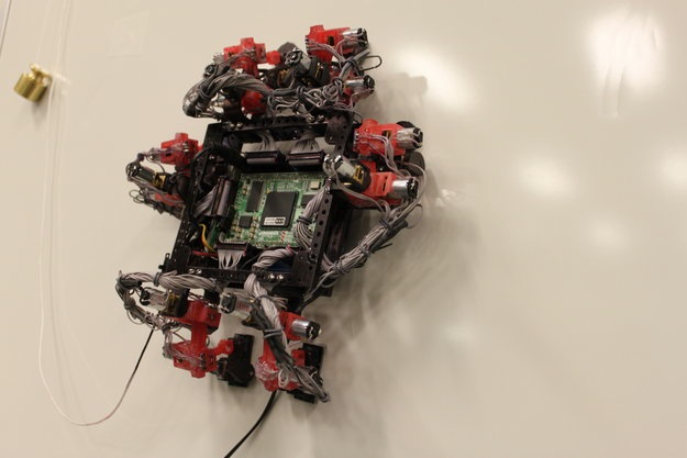 This Wall-Crawling Gecko Robot May Fly in Space One Day (Video)