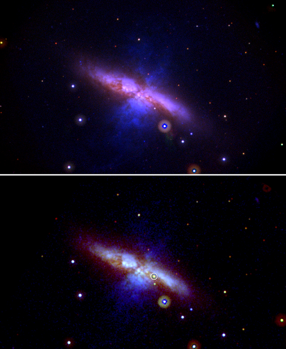 These Swift UVOT images show M82 before (top) and after the new supernova (bottom). The pre-explosion view combines data taken between 2007 and 2013. The view showing SN 2014J (circled) merges three exposures taken on Jan. 22, 2014. Mid-ultraviolet light is shown in blue, near-UV light in green, and visible light in red. The image is 17 arcminutes across, or slightly more than half the apparent diameter of a full moon.