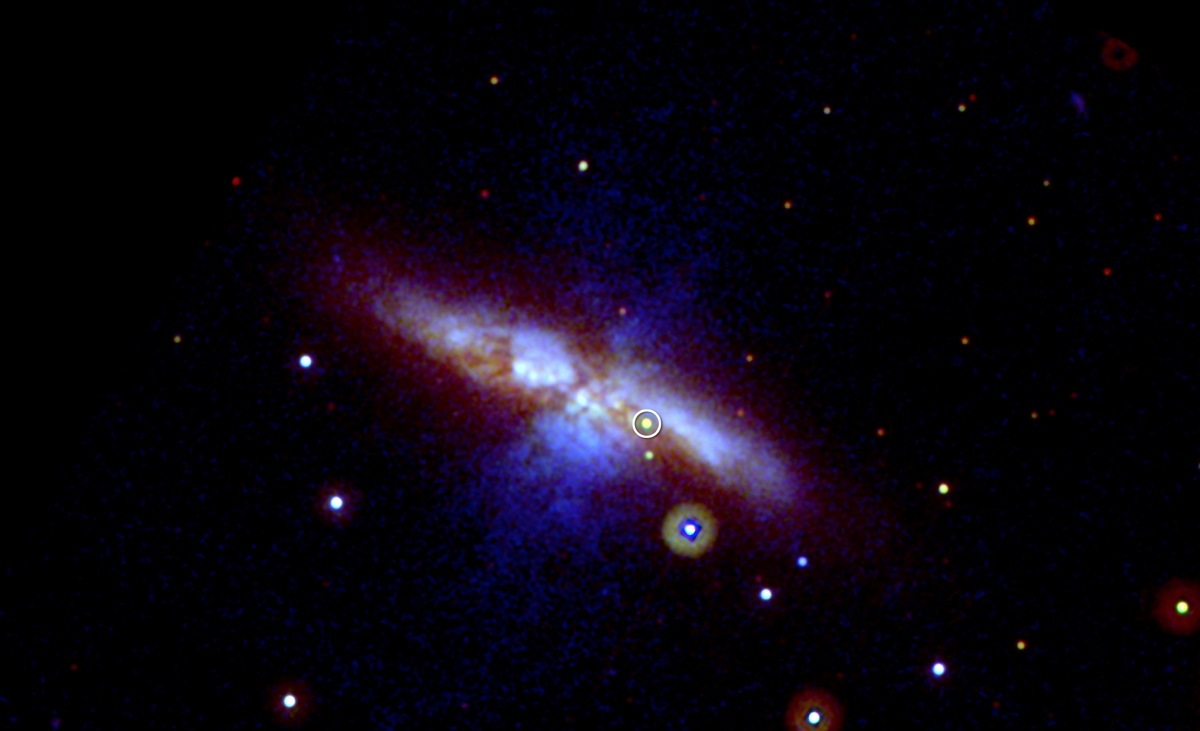 How Students Discovered New Supernova in Nearby Galaxy
