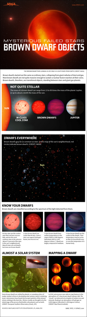 "Brown dwarfs are not quite massive enough to ignite nuclear fusion, yet larger than known planets. <a href=""http://www.space.com/24467-brown-dwarfs-failed-stars-explained-infographic.html"">See how brown dwarfs work in this SPACE.com infographic</a>."