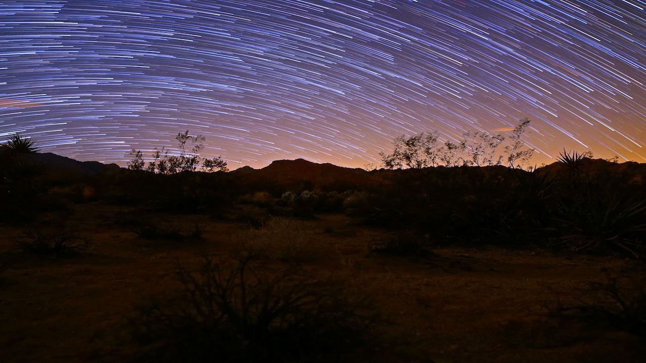 Startrails Over Joshua Tree by Gavin Heffernan
