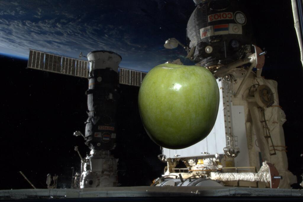 Koichi Wakata: Green Apple in Space
