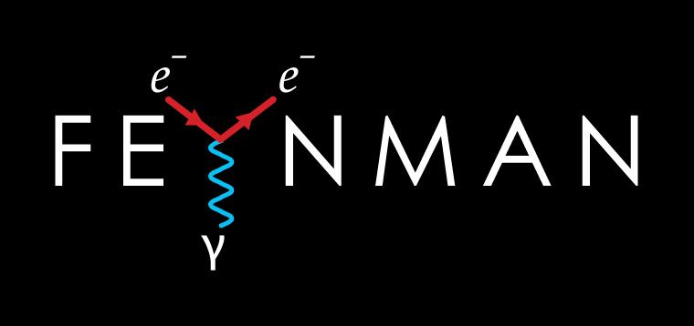 'Feynman' Typography by Dr. Prateek Lala