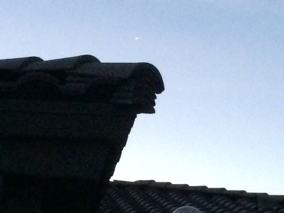 Rare Sight: See Venus During the Day (Photo)