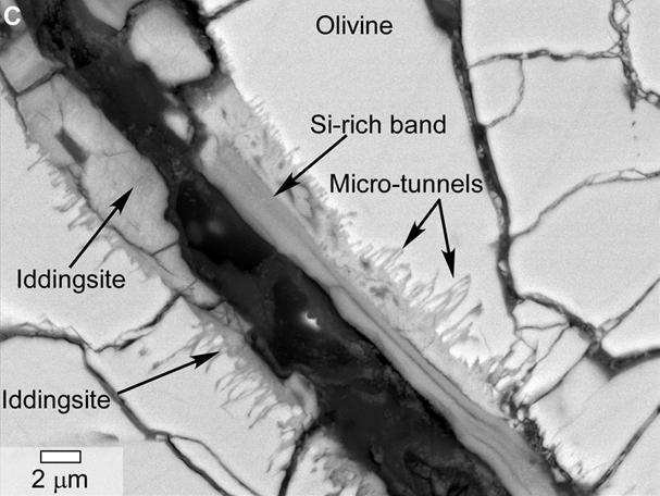 Mars Meteorite Yamato 000593 Tunnels