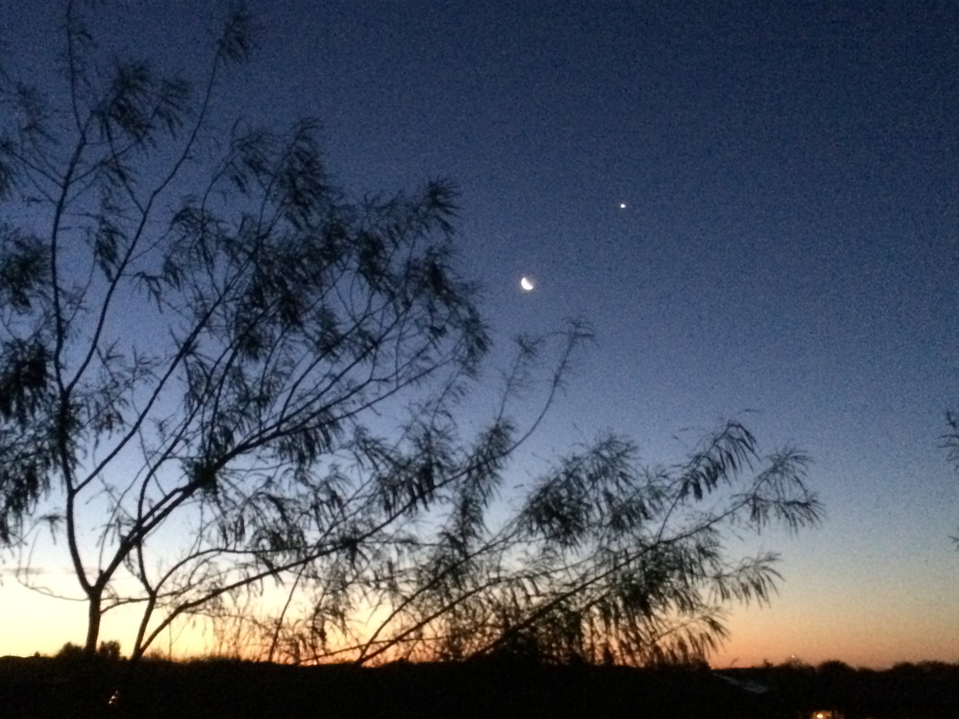 Venus and Moon Over Phoenix