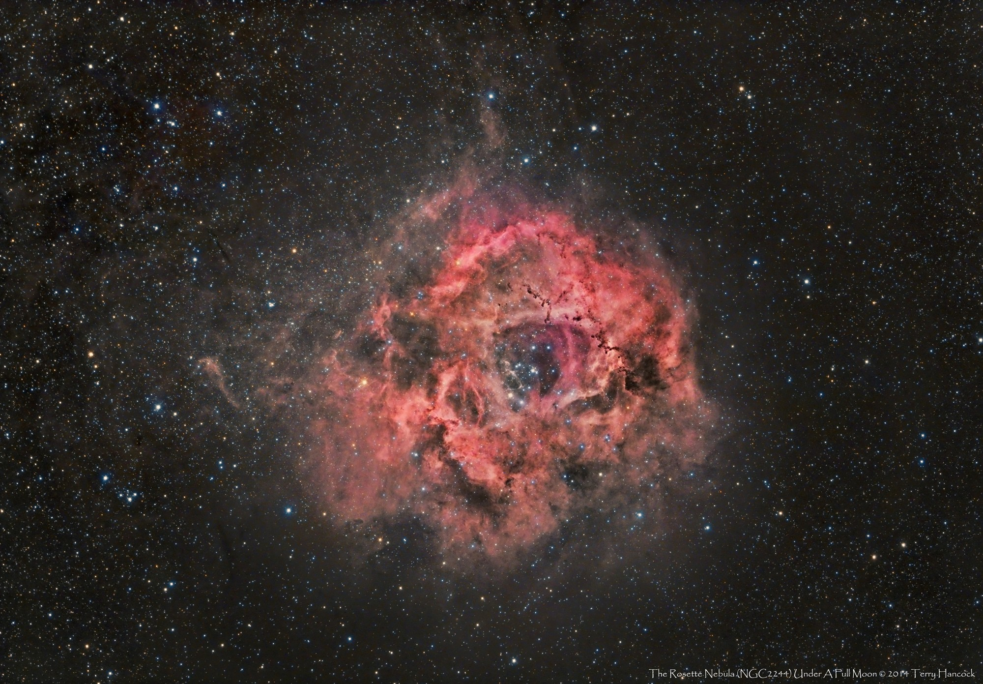 Rosette Nebula Blooms with Color in Amazing Amateur Photo