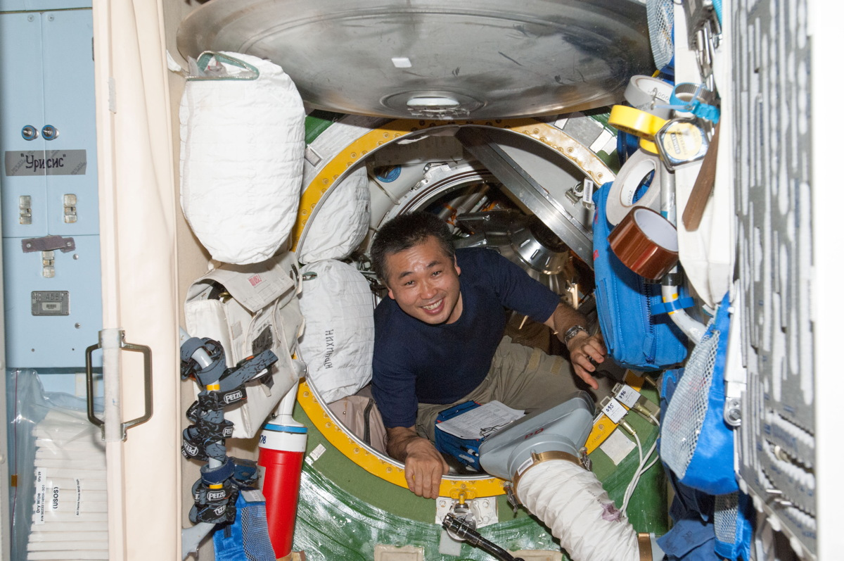 Wakata in ISS Hatch