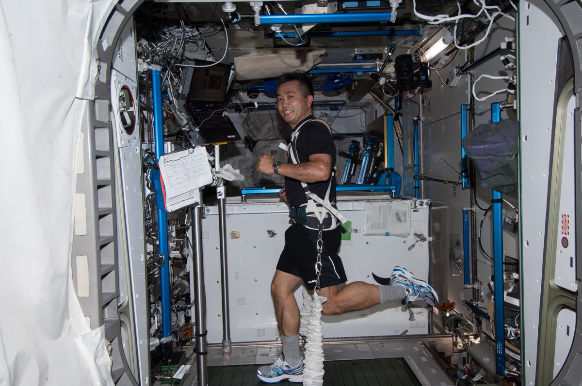 Wakata Runs on COLBERT Treadmill in ISS