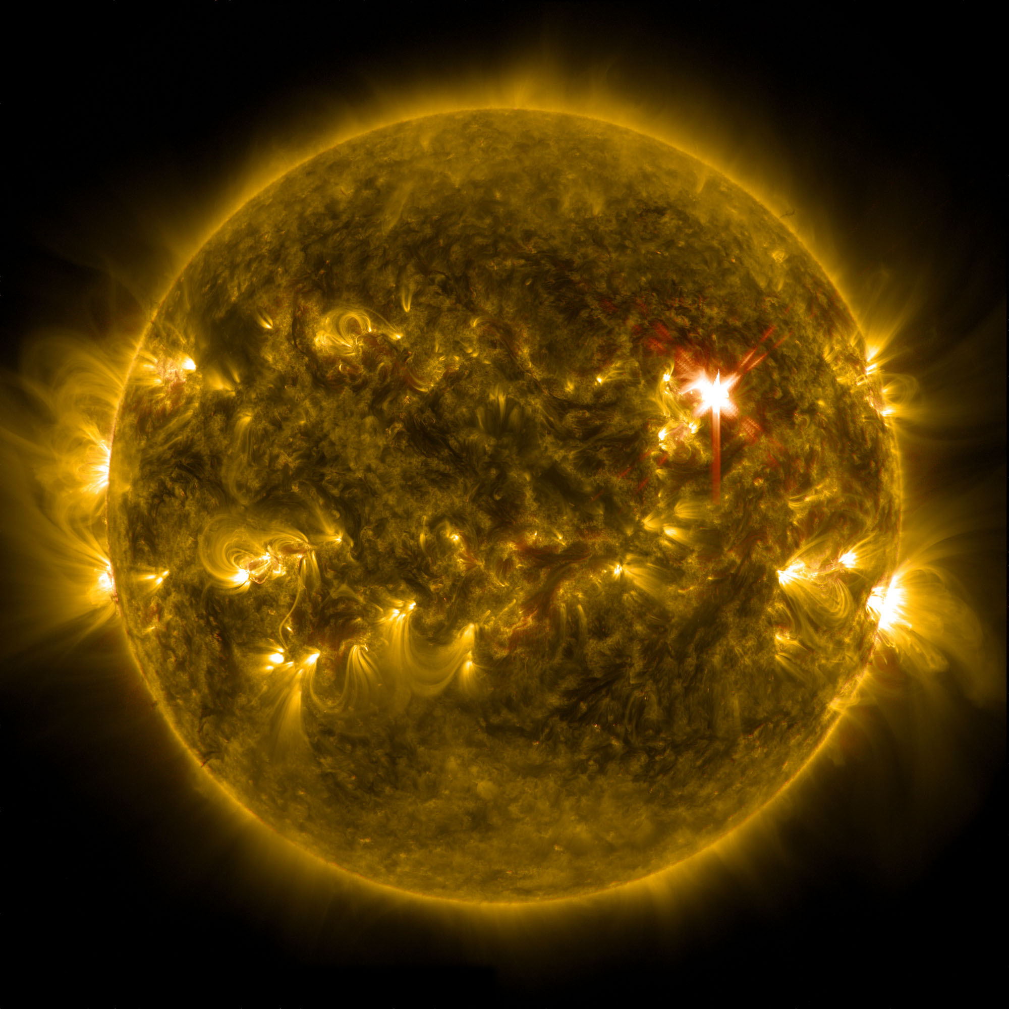 Major Solar Flare Erupts from the Sun (Video)
