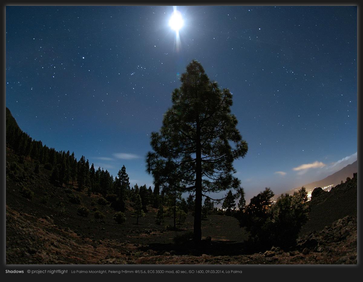 Moonlit La Palma Landscape