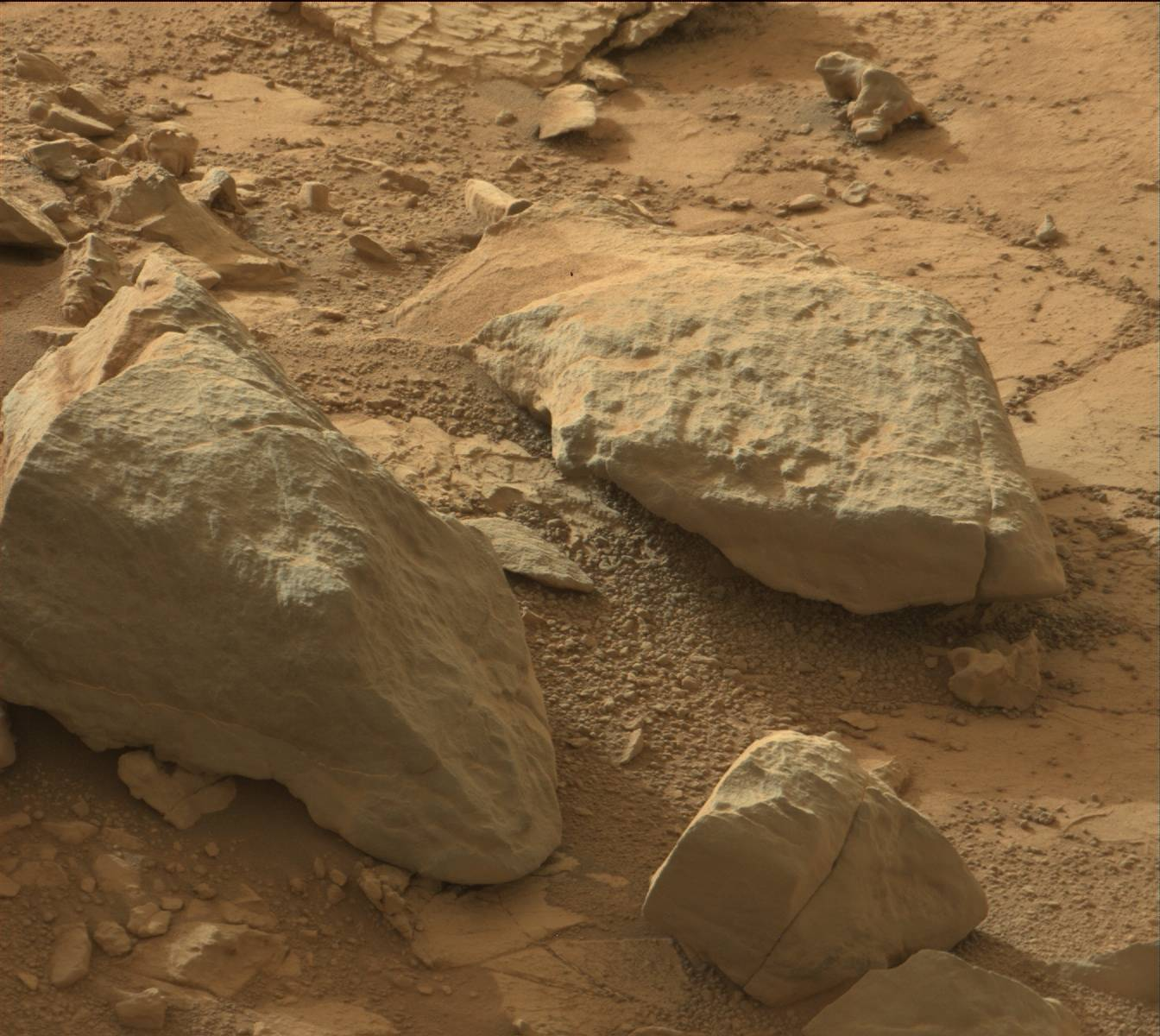 Mars 'Lizard' Photographed by Curiosity Rover