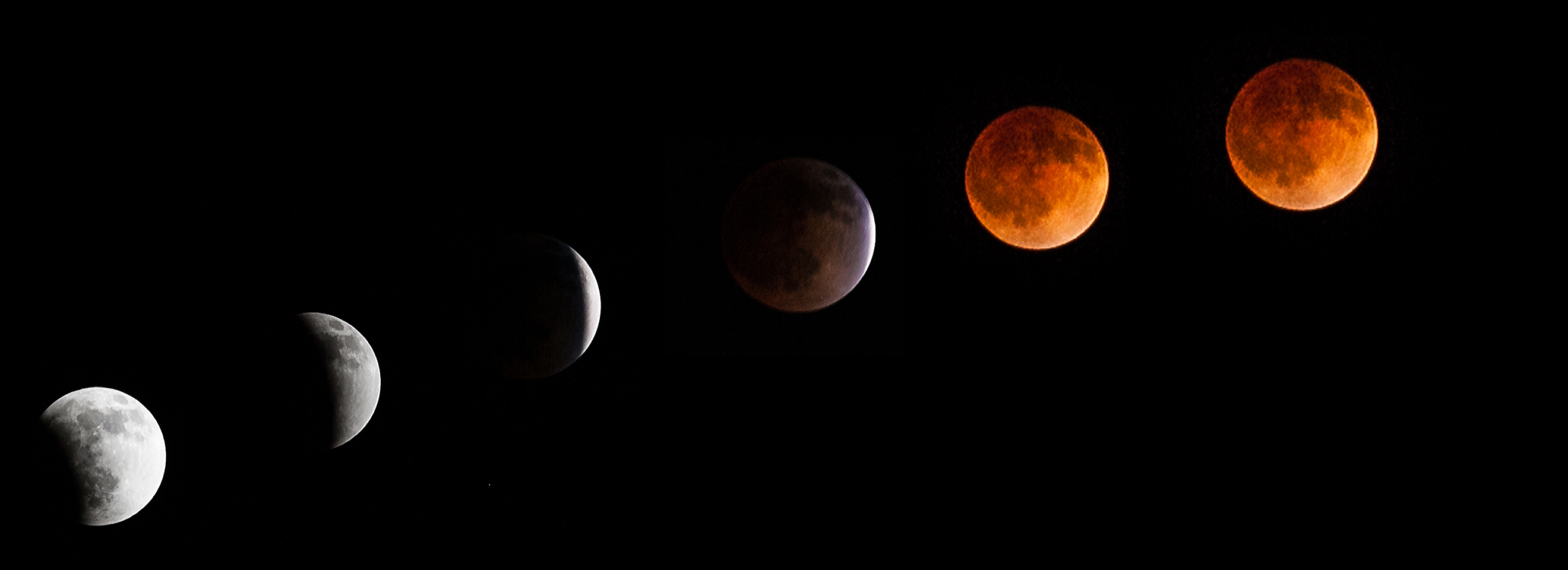 Total Lunar Eclipse of April 15, 2014 Series: Tyler Leavitt