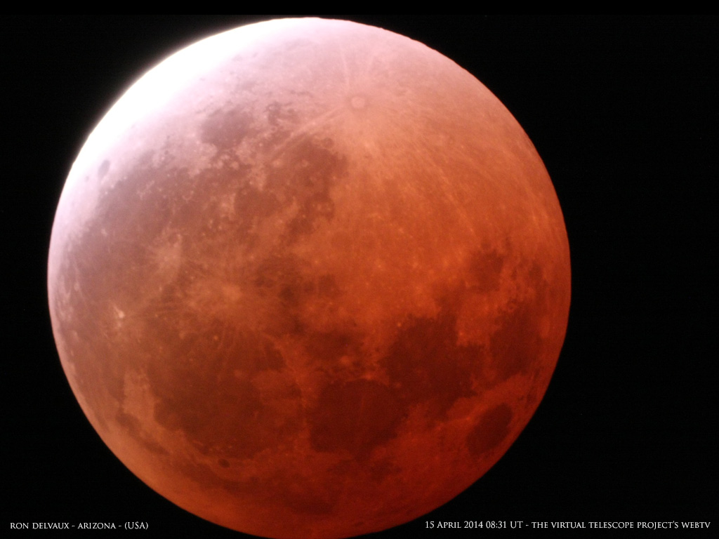 Lunar Eclipse Image from the Virtual Telescope Project
