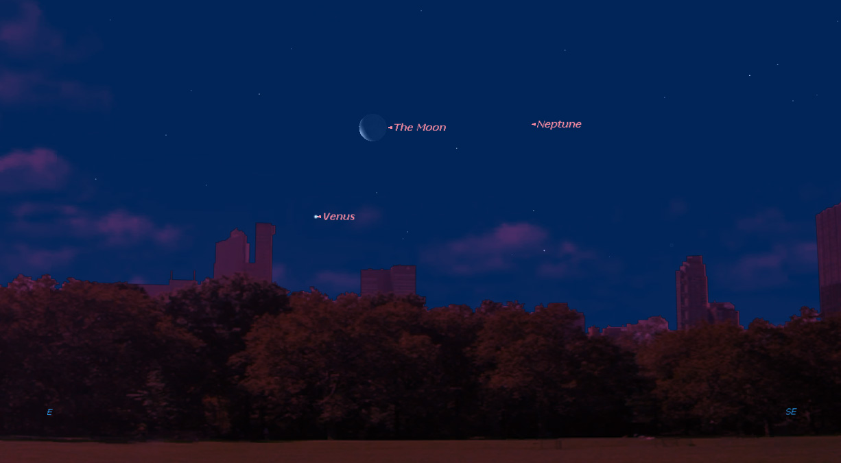 Venus and the Moon Shine Together at Dawn This Week: Where to Look