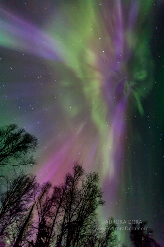 Breathtaking Auroras