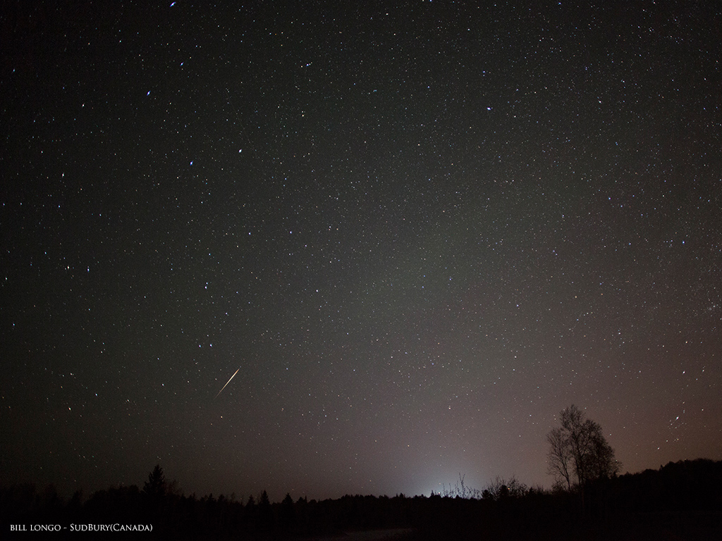 Camelopardalid Meteor Shower Streak: Bill Longo