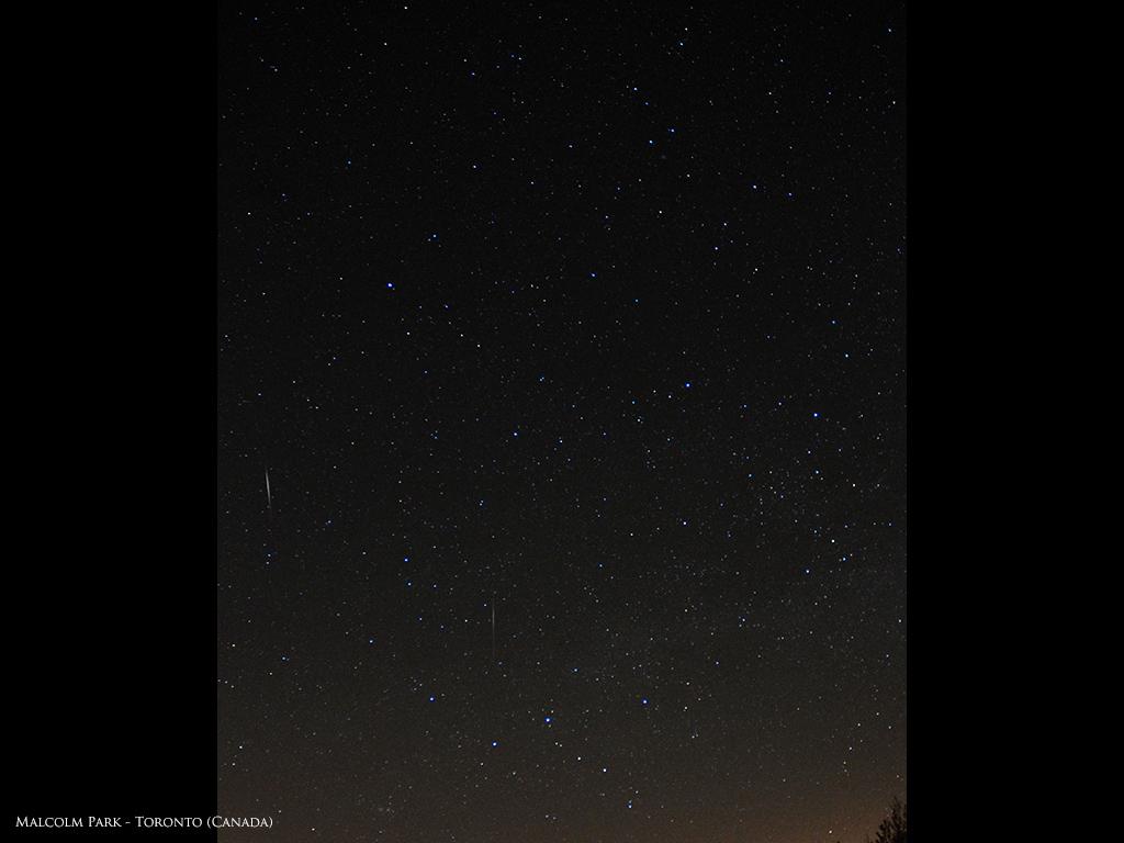 Camelopardalid Meteor Shower Streak: Malcolm Park