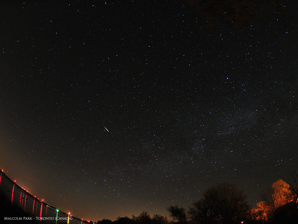 Camelopardalid Meteor Shower View: Malcolm Park
