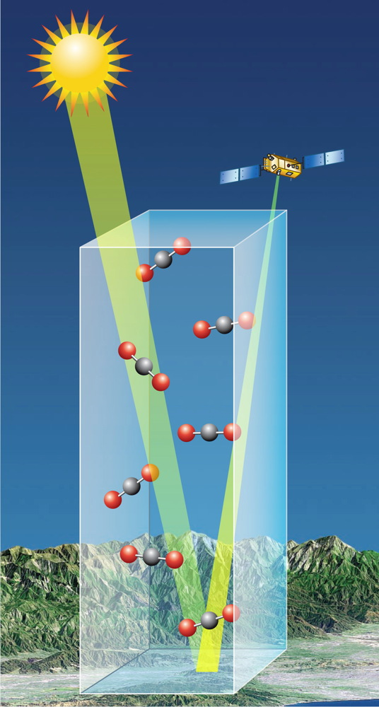 The CO2 Column That OCO-2 Will See
