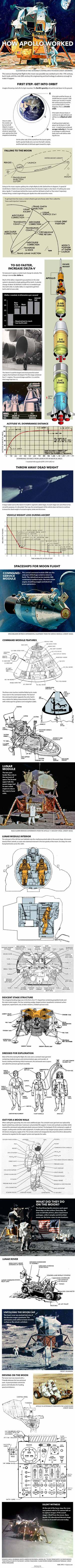 "NASA's Apollo moon landings were audacious feats of engineering. <a href=""http://www.space.com/26572-how-it-worked-the-apollo-spacecraft-infographic.html"">See how the amazing Apollo moon landings worked in this Space.com infographic</a>."