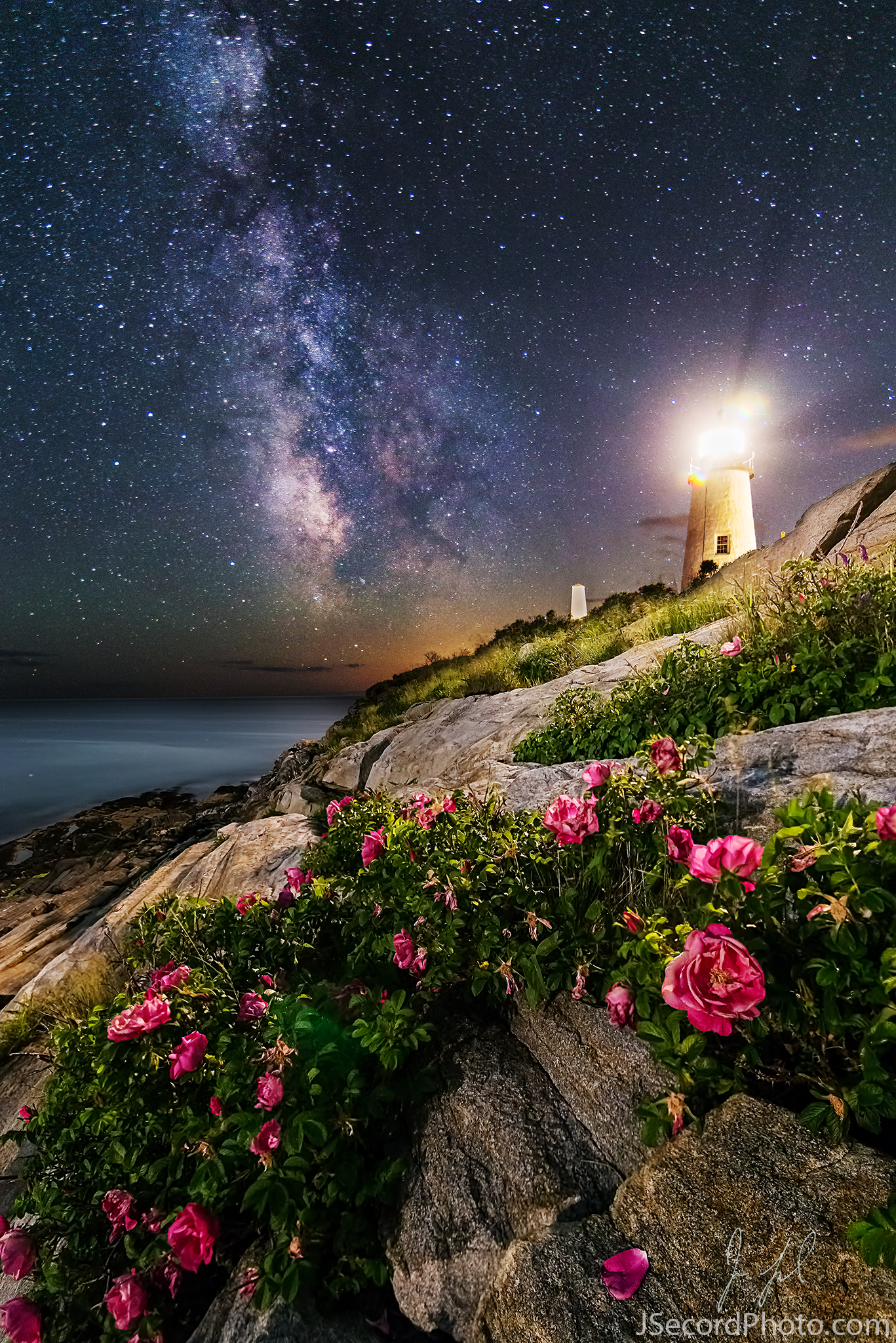 The Lighthouse and the Flowers