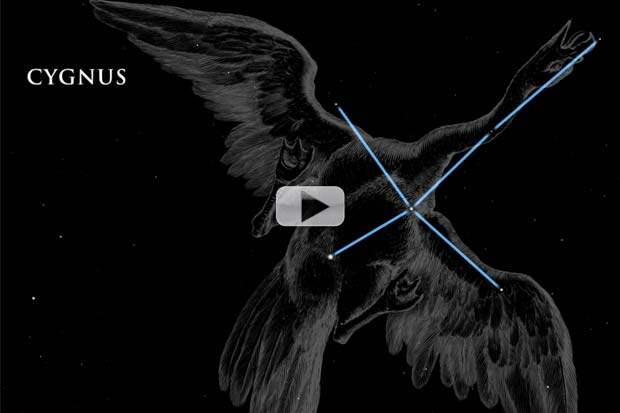 Cygnus and the Summer Triangle - August 2014 Constellation Skywatch | Video