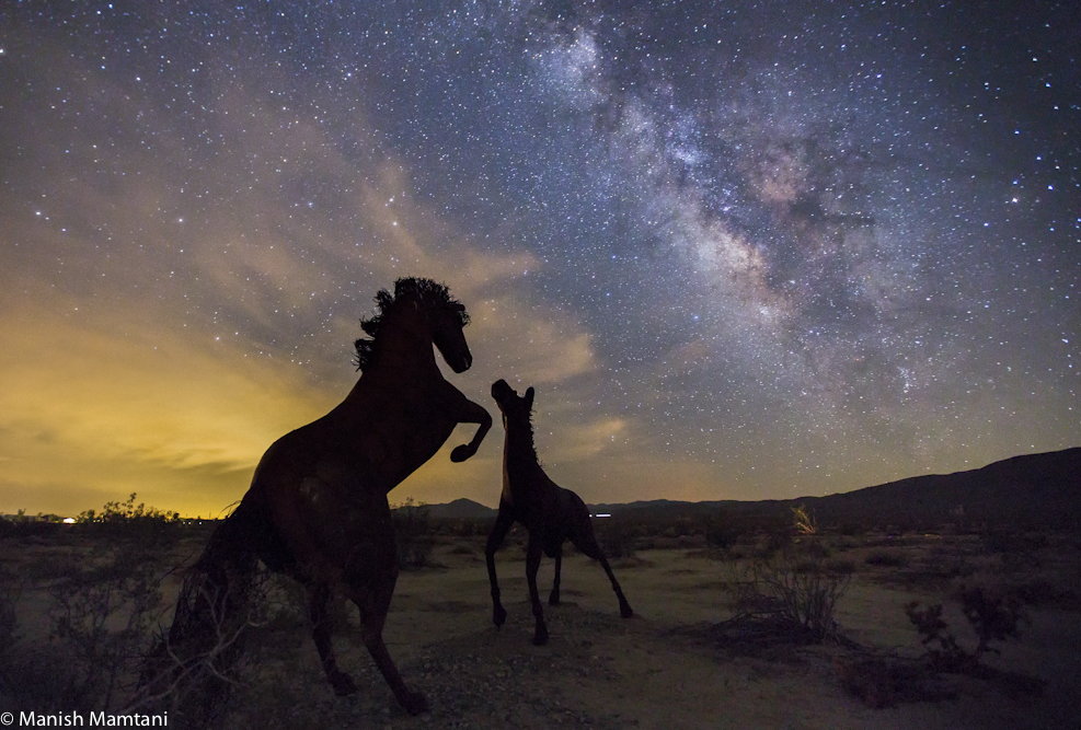 Milky Way and Horse Sculptures