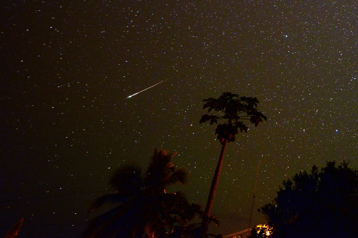 The Delta Aquarid Meteor Shower