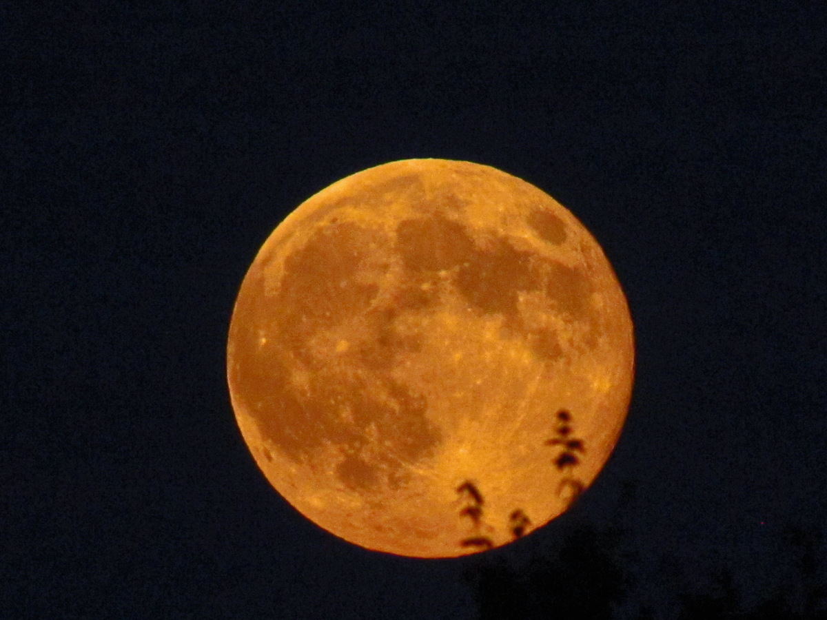 August 2014 Supermoon Over Frosty Drew Observatory, Rhode Island