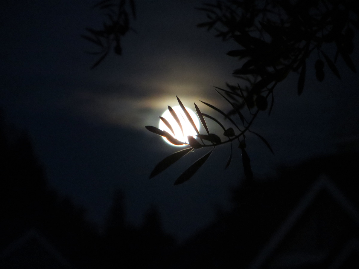 August 2014 Supermoon Over Pleasanton, California