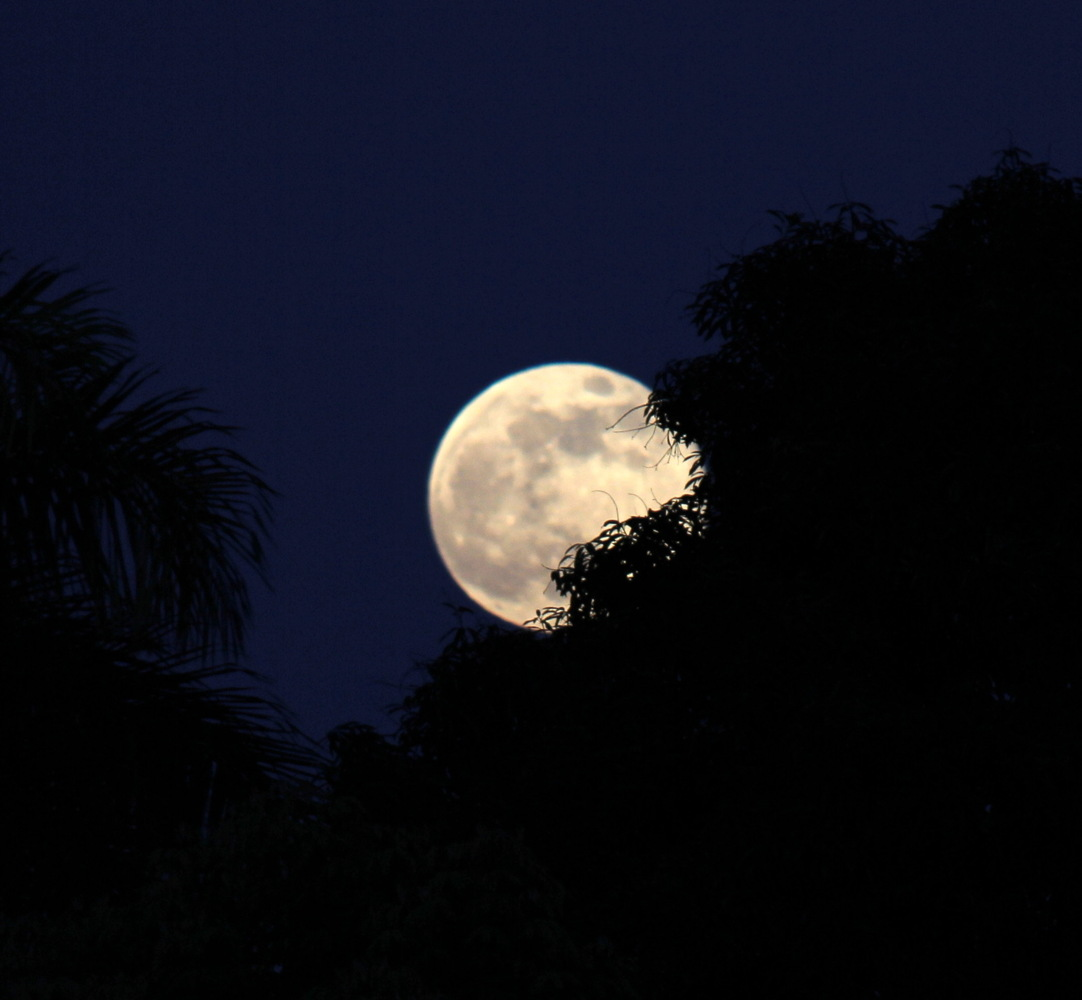 August 2014 Supermoon Over Puerto Rico