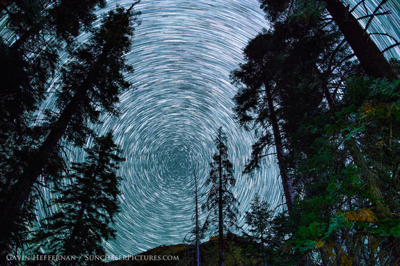 Sequoia and Kings Canyon National Parks boast some of the tallest trees on the planet — and unspoiled views of the night sky.
