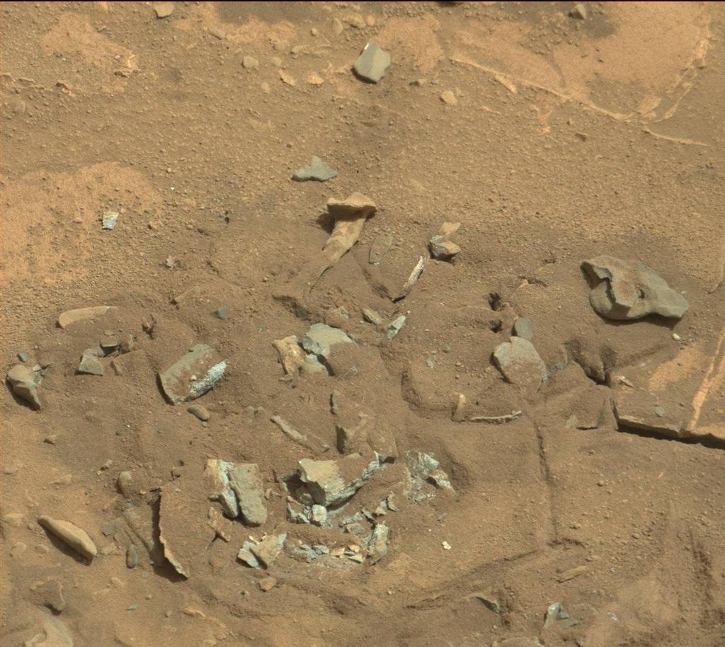 Thigh Bone on Mars? No, Just a Rock