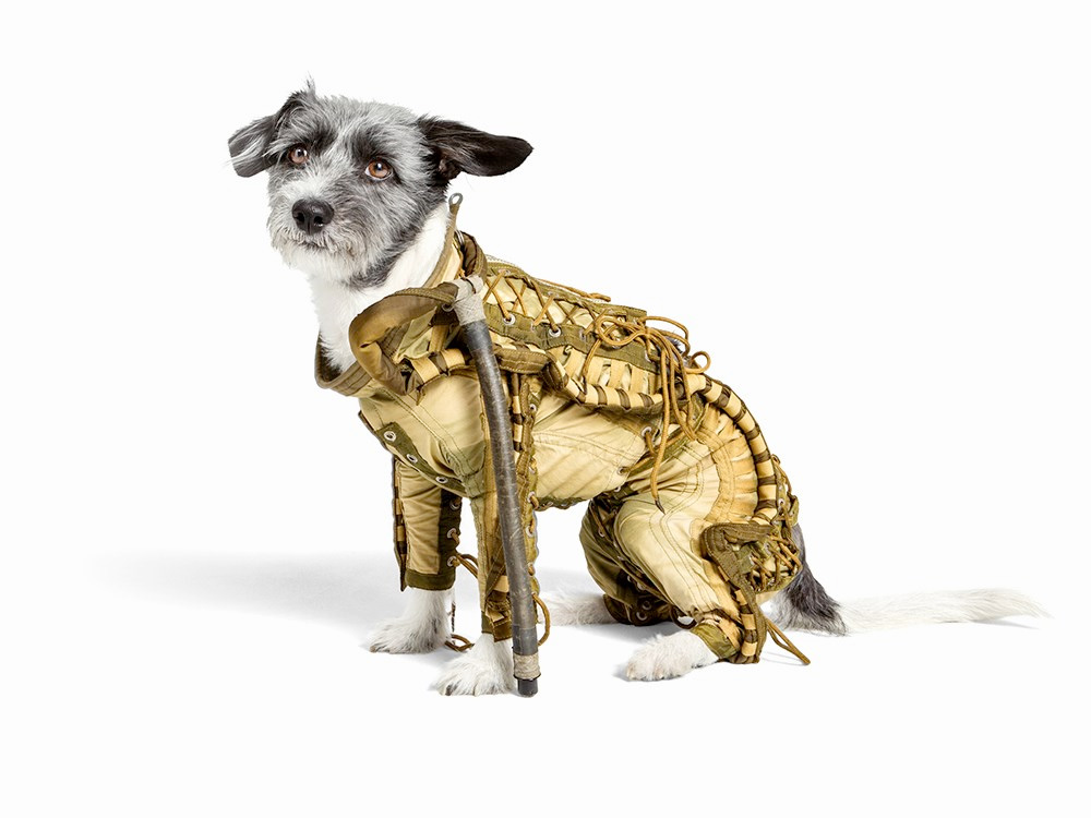 Dog Spacesuit Among Artist's Soviet Space Artifacts for Auction