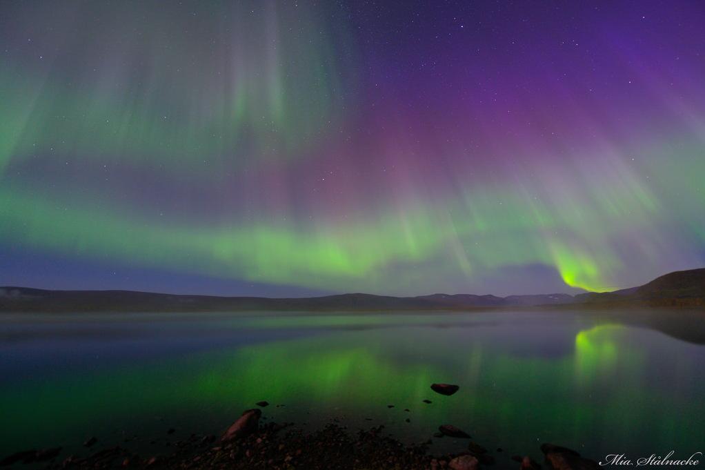 Aurora and Fog Over a Lake